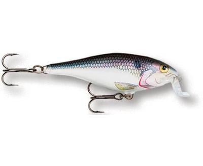 Shallow Shad Rap 05 SD