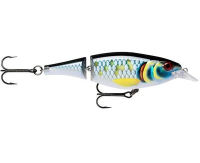 X-Rap Jointed Shad 13 SCRB